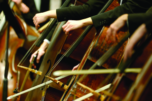 Cellos4x6